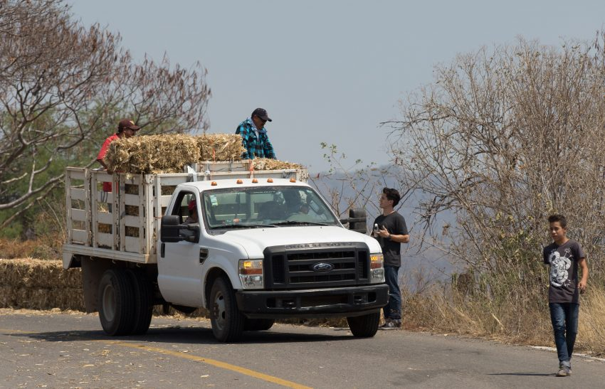Event organizer, Gerardo Rincon, makes sure hay bails have proper placement.